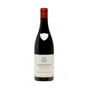 2018 Domaine Paul Pillot - Bourgogne Rouge